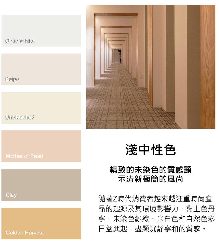 02-color-中文